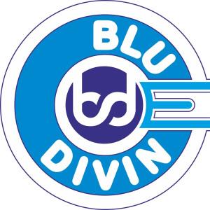Blue Divine Event Management