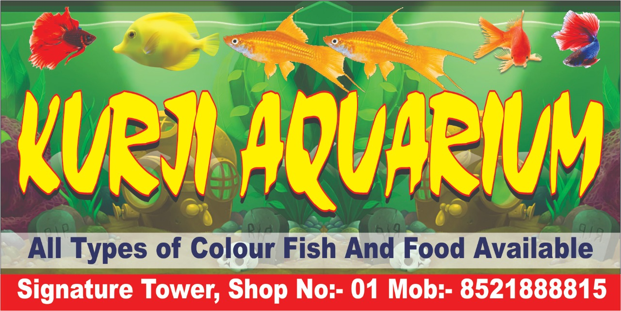 Kurji Aquarium Shop